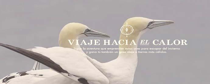 Iberdrola_ViajeHaciaElCalor