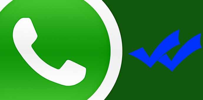 El fenómeno Whatsapp en España
