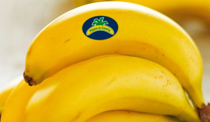 El Ruso de Rocky gana la cuenta de Plátano de Canarias