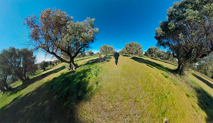 La nueva 'realidad virtual' del aceite de oliva