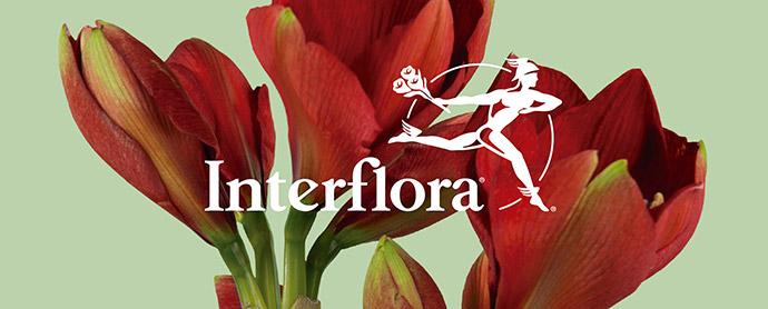 Interflora confía su comunicación global para España y Portugal a Manifiesto