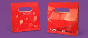 Packaging de regalo tipo bolsa