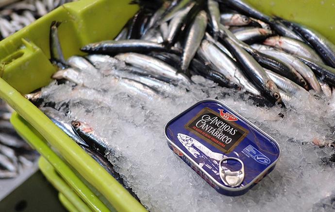 Cada año compra 500 toneladas a los pescadores vascos, contribuyendo al desarrollo local y a la exportación del producto en 22