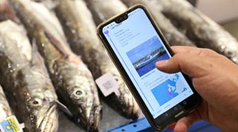 Blockchain de pescado de Carrefour.