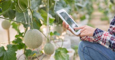 FoodTech, un sector de 45 millones con vistas a crecer un 191% en 2021